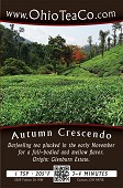 Autumn Crescendo