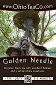 Golden Needle